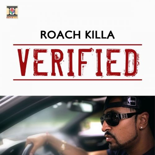 Download Verified Roach Killa, Naseebo Lal and others... full mp3 album
