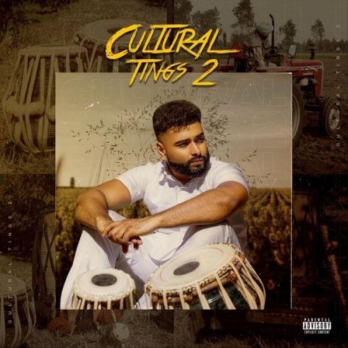 Download Cultural Tings 2 AK, Labh Janjua and others... full mp3 album